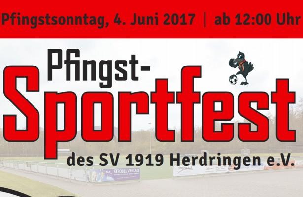 pfingstsportfest17